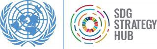 SDG Strategy Hub Logo